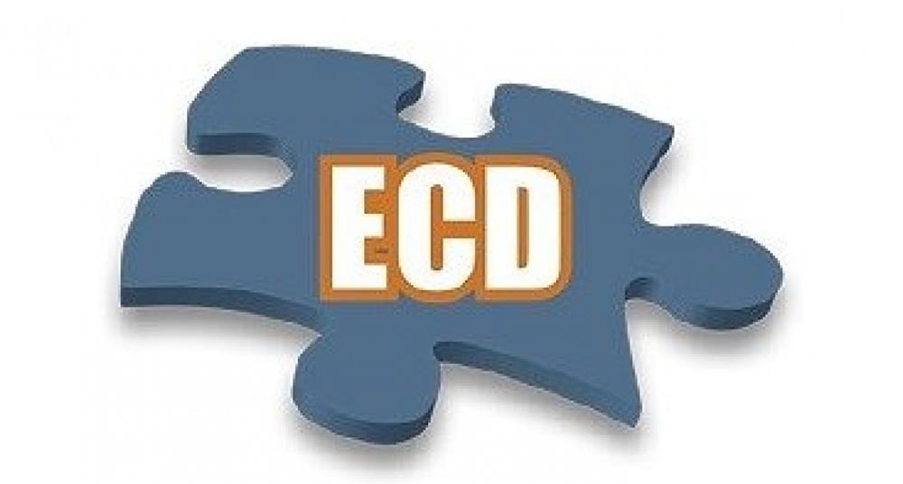 Qual o Prazo de Apresentação da ECD?