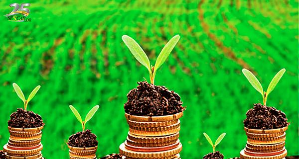 Tributação da área rural e aspectos ambientais
